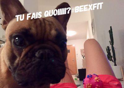 communaute-beexfit-446